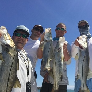 March Report for Sebastian Inlet and Fort...