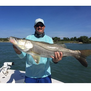 September Snook Season At Sebastian Inlet