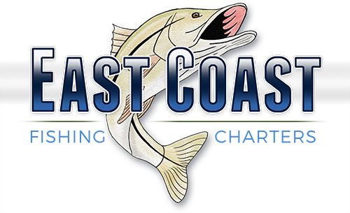 East Coast Fishing Charters